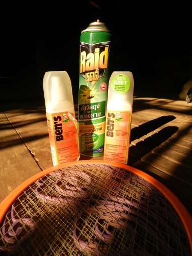 The mosquitoes beat us despite our best defenses